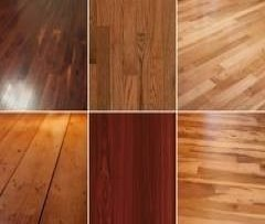 New Softwoods/Hardwoods